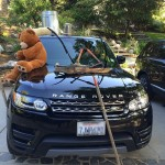 Niall's Car Pranked